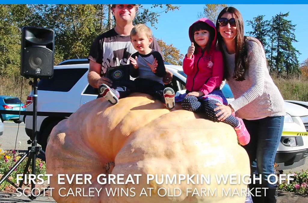 Great Pumpkin Weigh Off 2018 The Old Farm Market Duncan BC