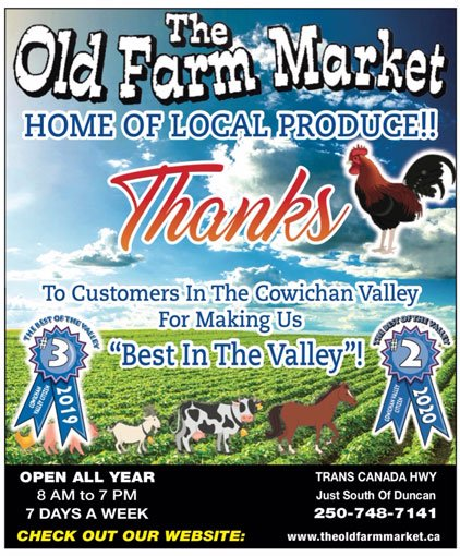 Best Customer Service In Valley
